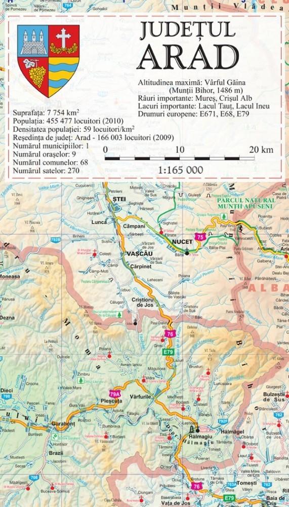 Harta Judetului Arad 100x70 Cm Sipci Plastic Stiefel Romania