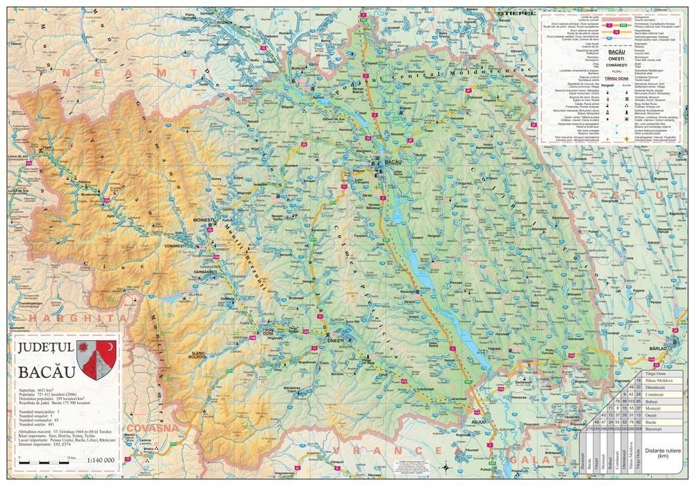Harta Judetului Bacau 100x70 Cm Sipci Plastic Stiefel Romania