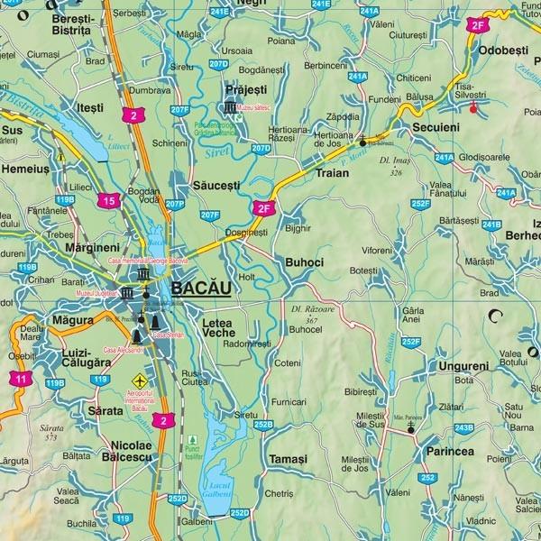 Harta Judetului Bacau 100x70 Cm Sipci Plastic Emag Ro