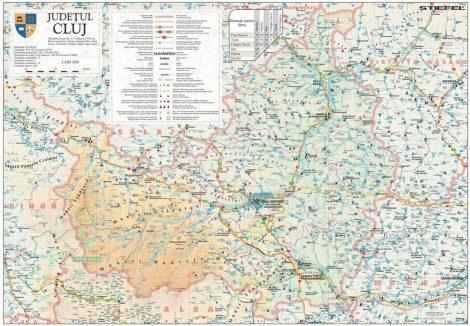 Harta Judetului Cluj 100x70 cm sipci plastic