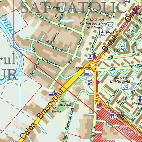 Harta Municipiului Onesti Bc Print Digital Sipci De Lemn