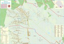 Harta Orasului Flamanzi BT - sipci de lemn