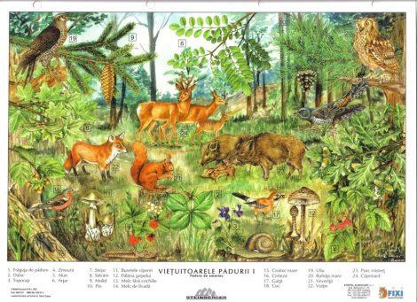 Viețuitoarele pădurii - planșă de perete